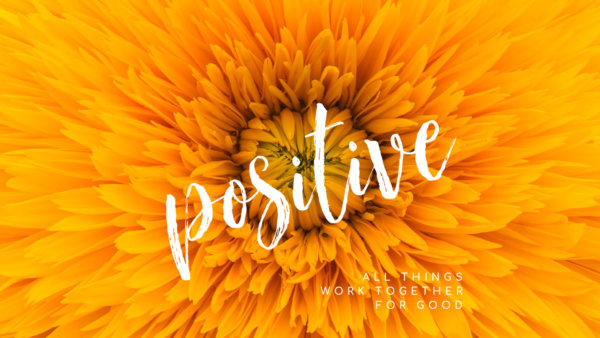 Positive, Part 5: Get Your Passion Back Image